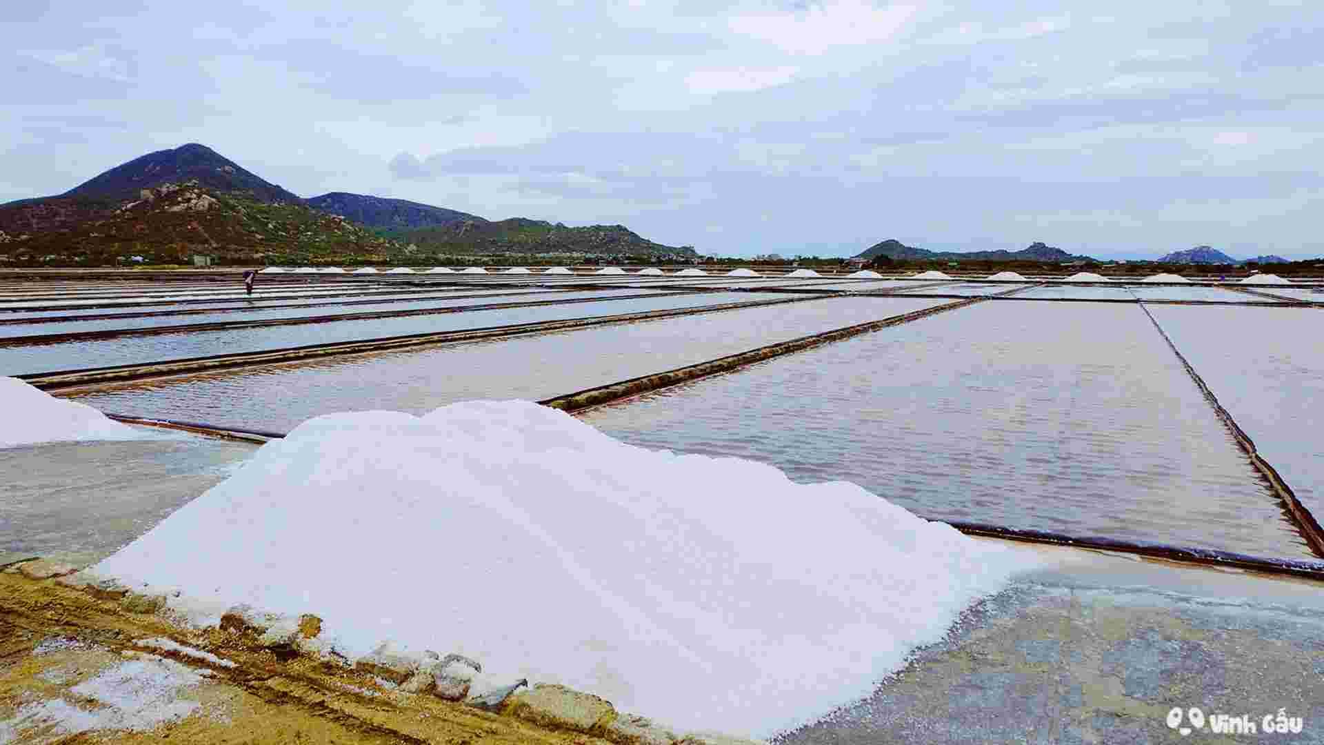 Đồng muối Phương Cựu