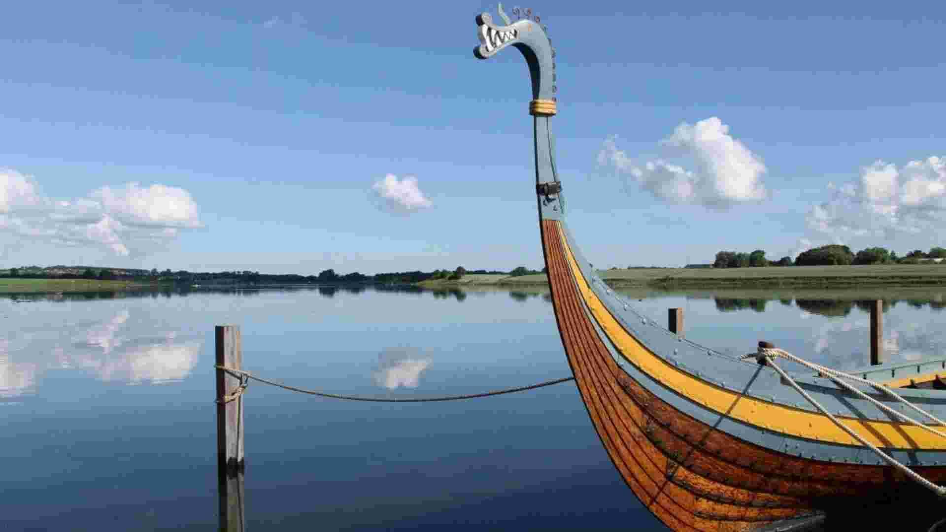 Vikingevej 123