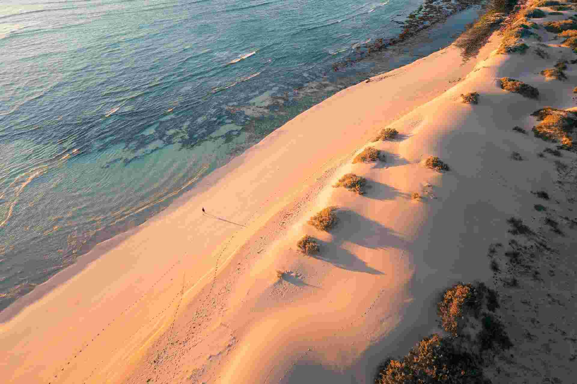 Tour two wonders that put Ningaloo and Shark Bay on the UNESCO World Heritage List