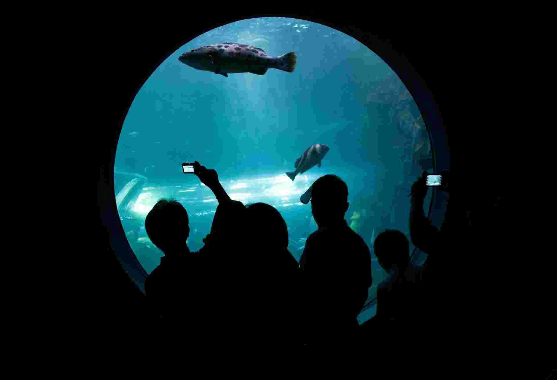 SEA LIFE Busan Aquarium Parking