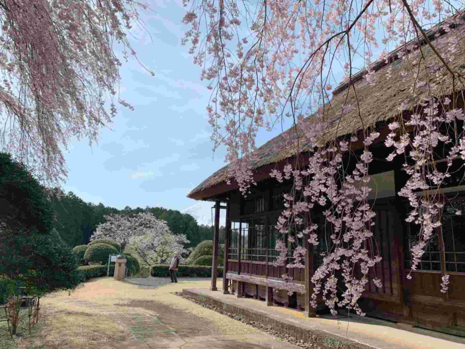 Chichibunomiya Memorial Park