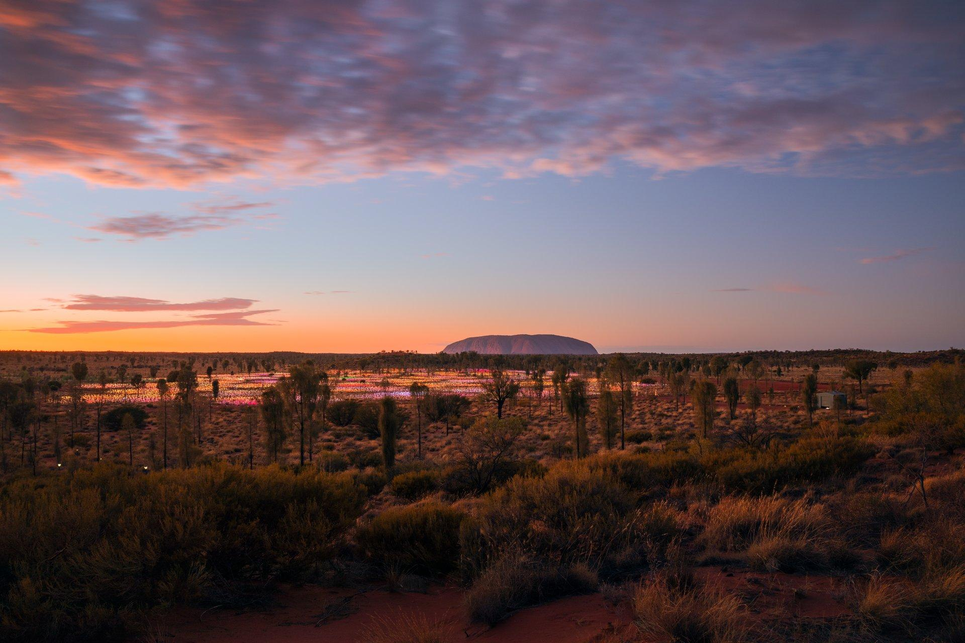 All about the Centre 4 day Red Centre luxury itinerary Thumbnail