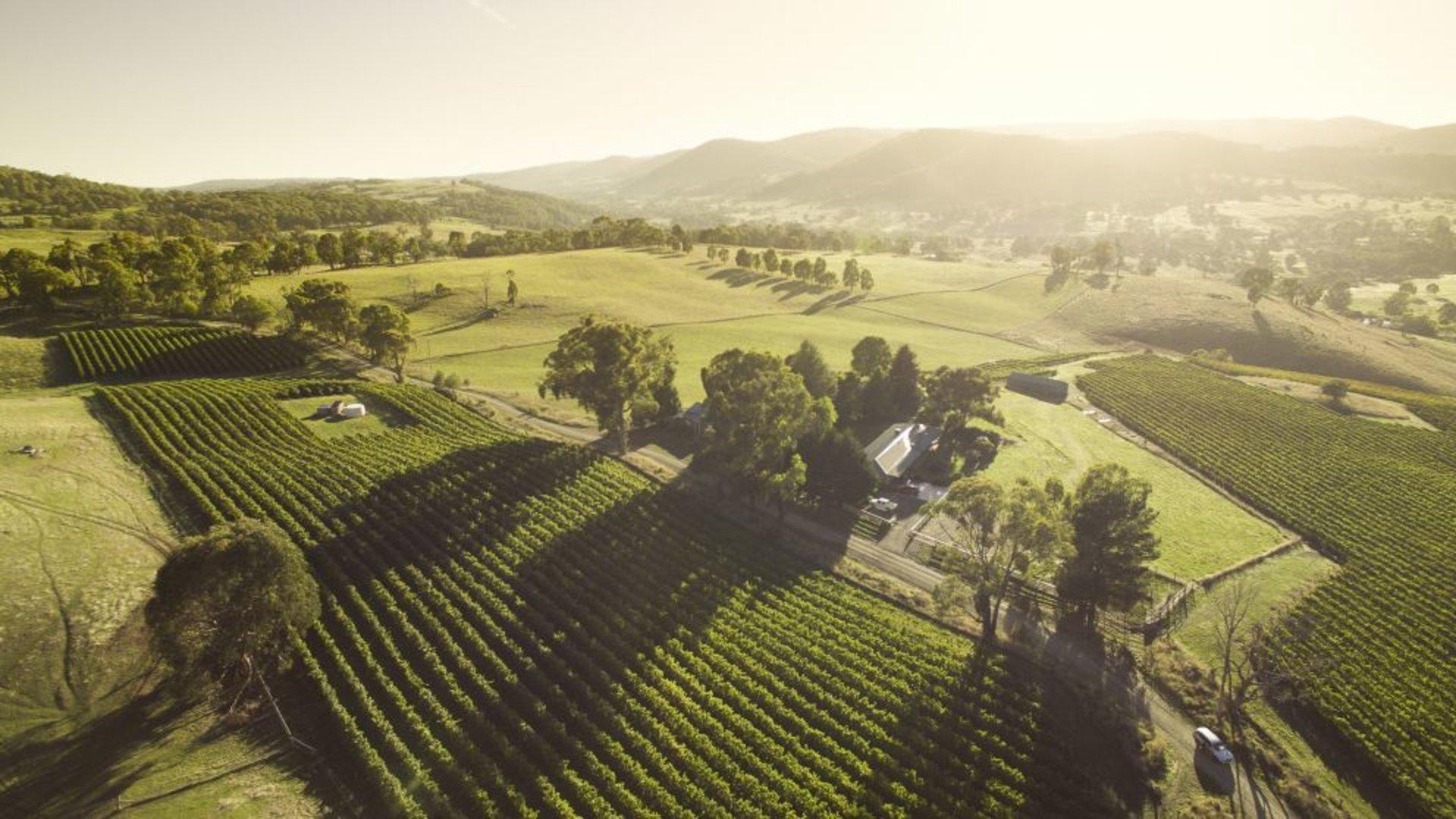 NSW Wines Region Thumbnail