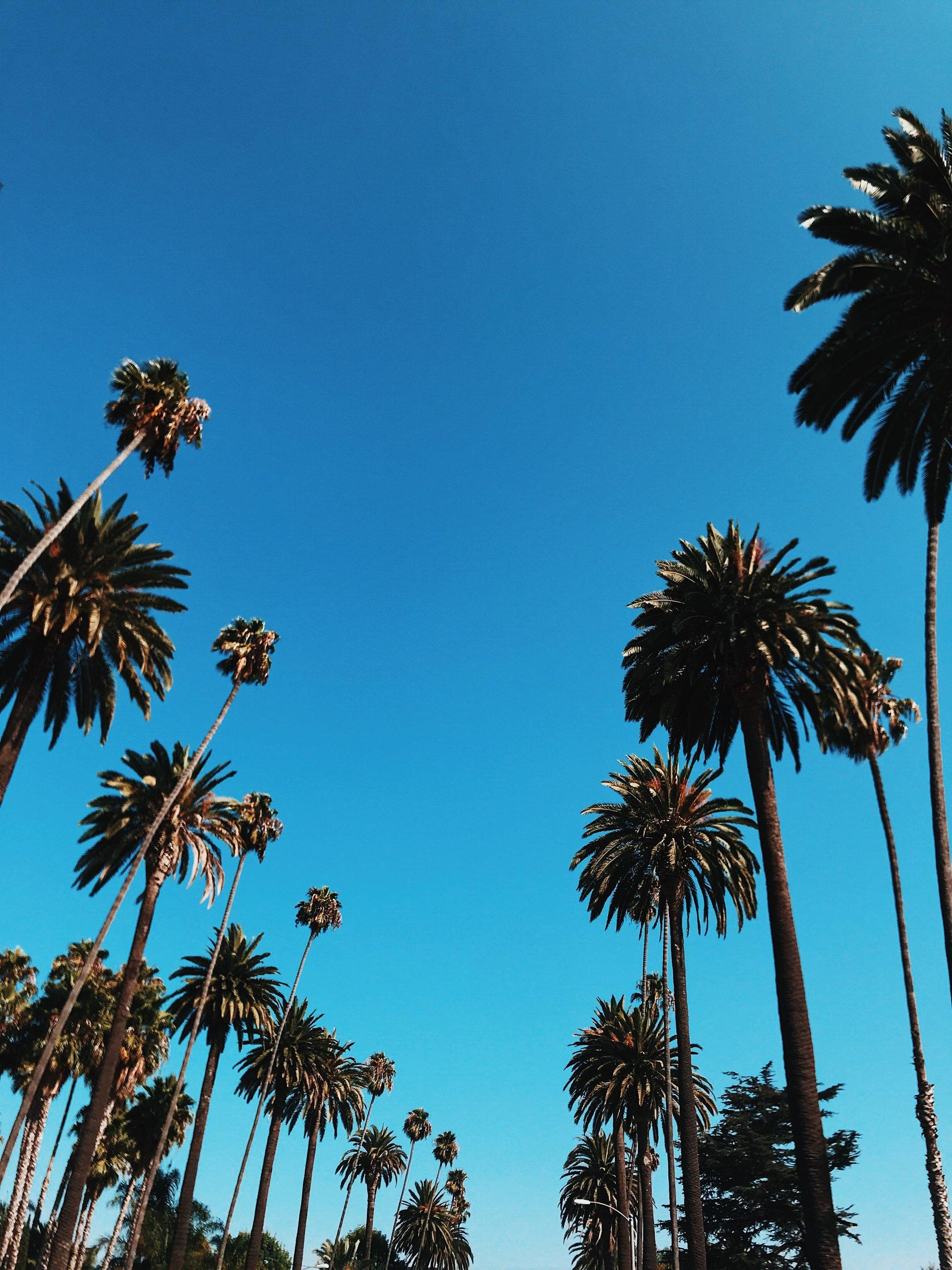 Planning a California Road Trip up the Scenic Pacific Coast Highway (PCH)  Thumbnail