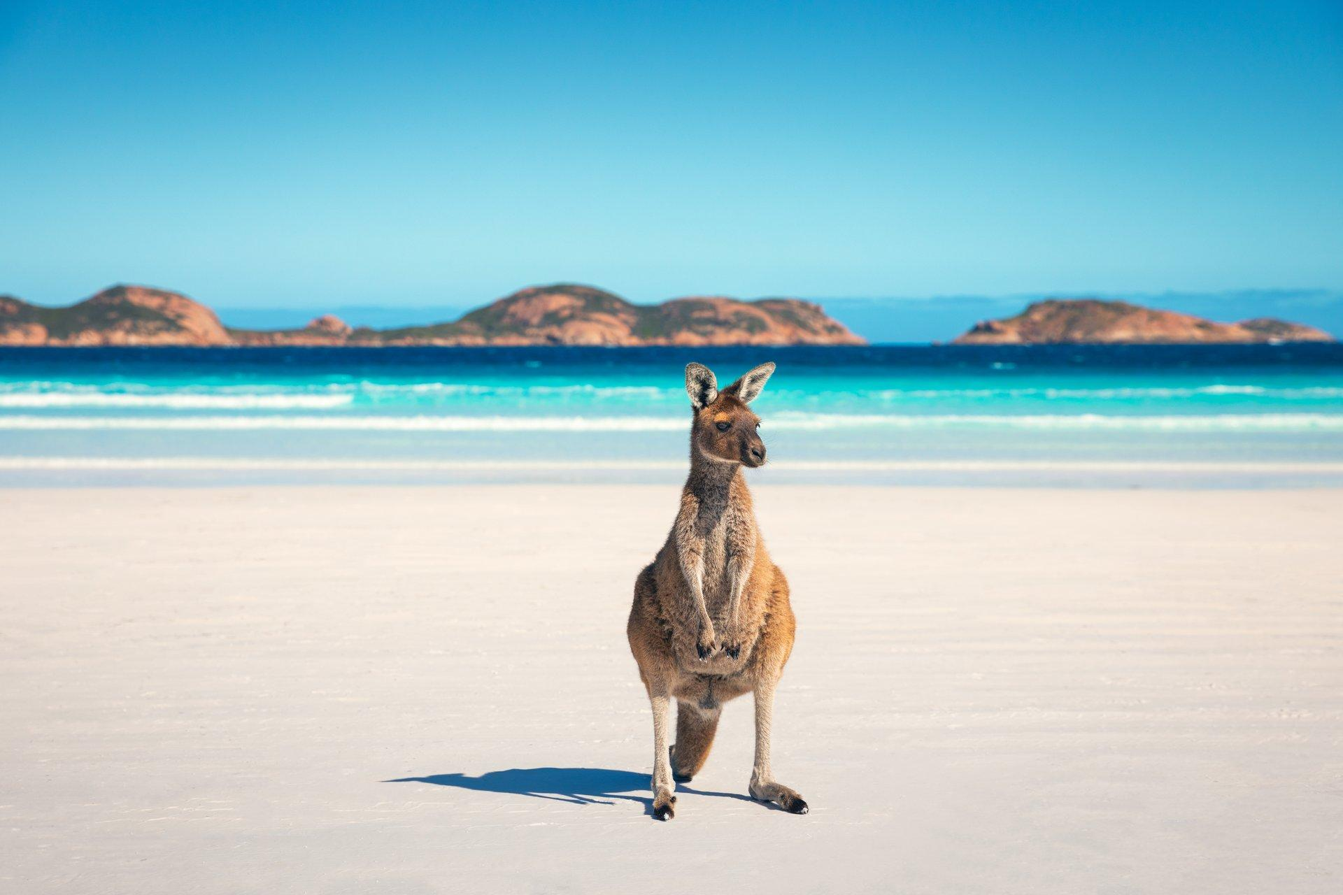 Spend 11 days taking one unique road trip around the edge of the South West Thumbnail