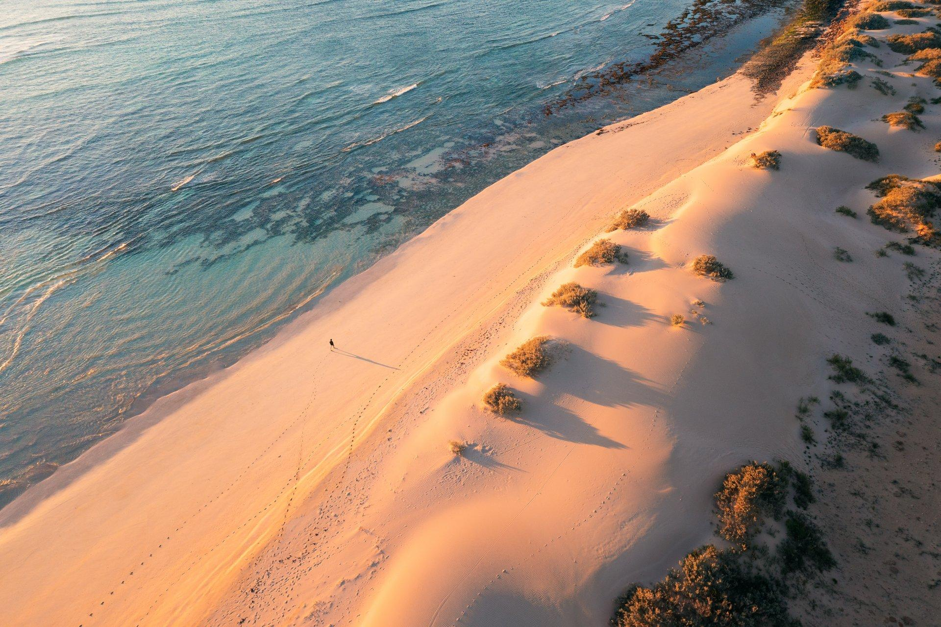 Tour two wonders that put Ningaloo and Shark Bay on the UNESCO World Heritage List Thumbnail