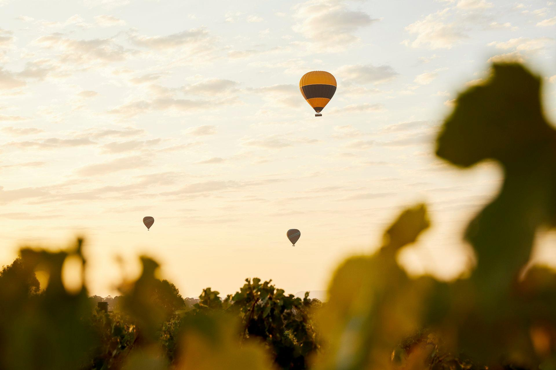 Hunter Valley: beautiful wines and spectacular local produce Thumbnail